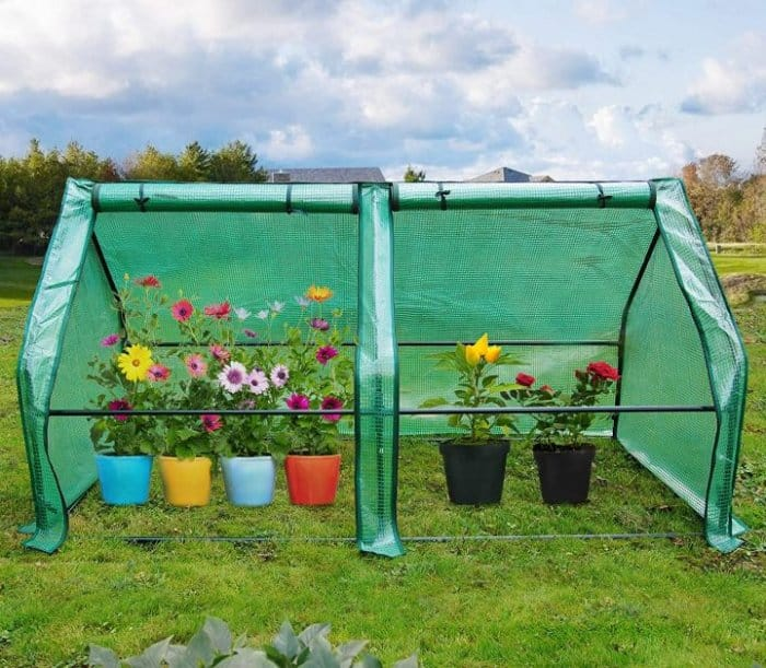 """Quictent 71"""" WX 36"""" D X 36"""" H Portable Cloche Mini Greenhouse, Large Zipper Doors Garden Green House - 50 Pcs T-Type Plant Tags Included (Green)"""