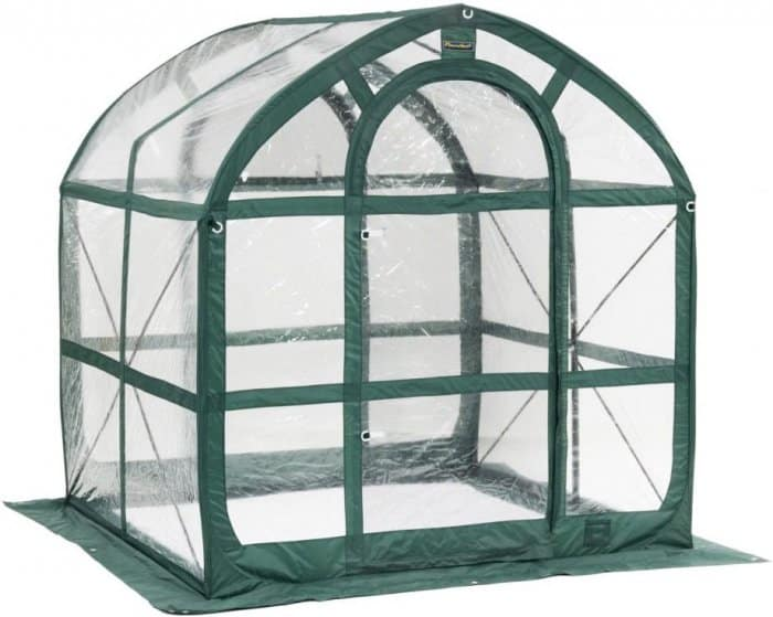 Flower House FHSP300CL SpringHouse Greenhouse