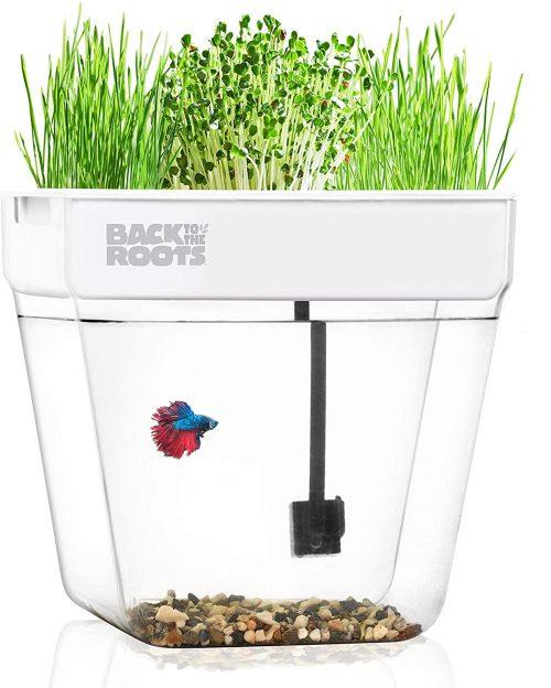 best aquaponics greenhouse kits
