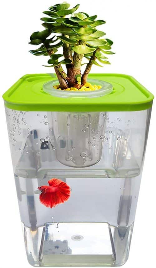 WAWLIVING Aquaponics kit