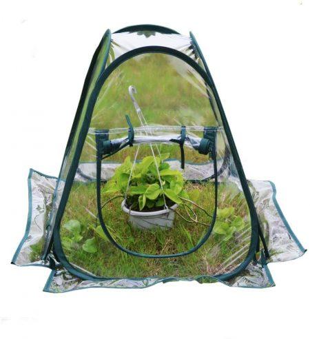 Mini Pop up Greenhouse