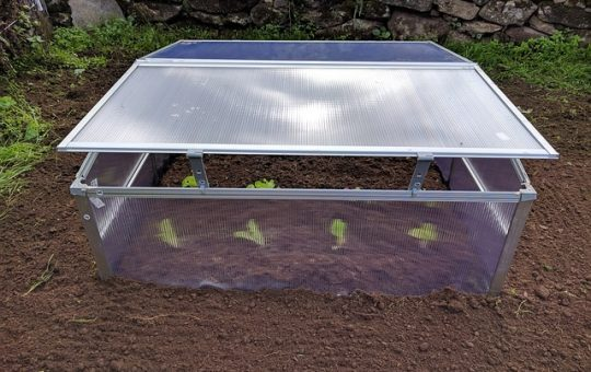 best mini greenhouses