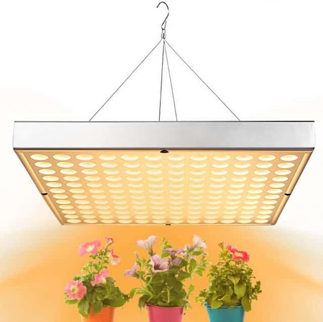 shengsite LED grow light