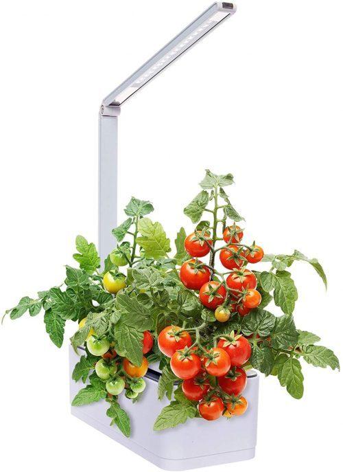 Mindful Design Hydroponic Indoor Herb Garden Kit