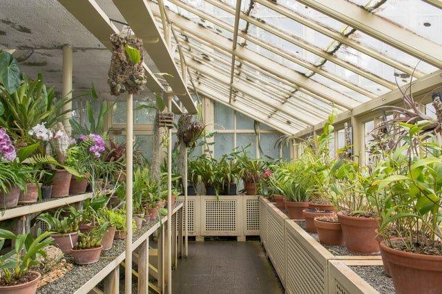 greenhouse size